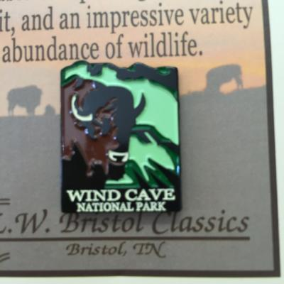 Wind Cave Bison Pin