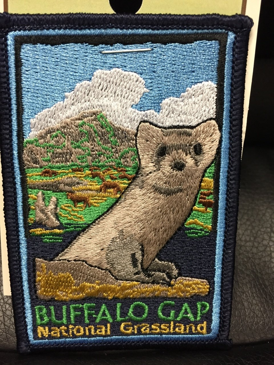 Buffalo Gap National Grassland patch