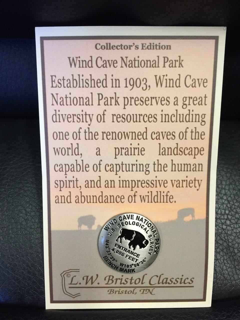 Wind Cave Geo Marker Bison Pin