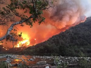Fire Impacts Freshwater Resources