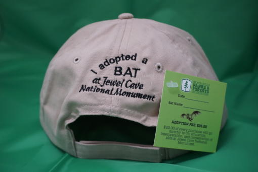 Adopt a Bat Hat back