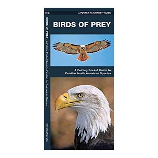 Birds of Prey Guide