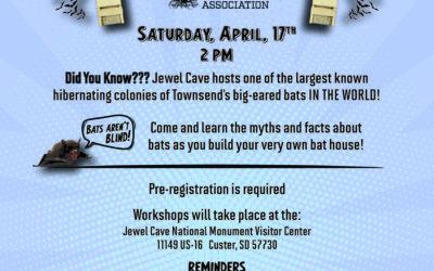 Bat Box Workshop Registration